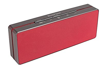 [New Release] Roypow 10W Slim Wireless Bluetooth 4.0 Speaker with High-Def Sound, Robust Bass (2 Drivers & 1 Diaphragm), Aluminum Alloy Housing, Built-in Microphone, 18 Months Warranty