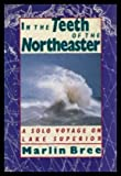 img - for In the Teeth of the Northeaster book / textbook / text book