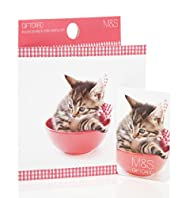 Kitten Photo Gift Card
