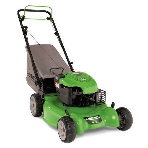 Lawn Boy 10641 20-Inch 6.75-Gross-Torque Briggs & Stratton Gas-Powered Variable-Speed Lawn Mower