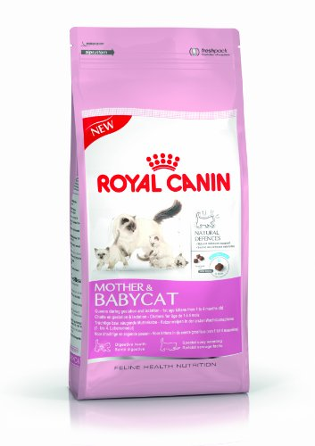 Royal Canin 55171 Mother & Babycat