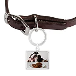 CafePress French bulldog Large Landscape Pet Tag - Standard Silver made by CafePress