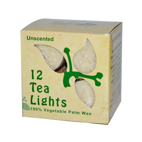 Palm Wax Tea Light Candles Cream 12 Pack(S)
