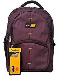 Skyline College/School/Office Backpack Bag With Warranty-505