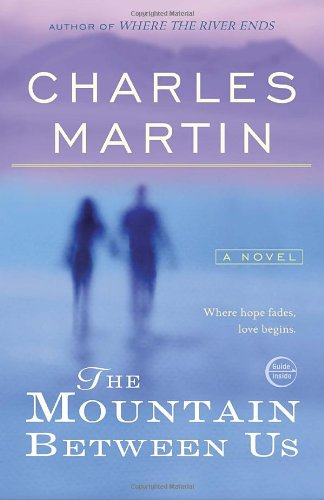 The Mountain Between Us book cover