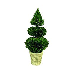 Preserved Boxwood Double Ball Sphere &amp; Cone Topiary - 28&quot;