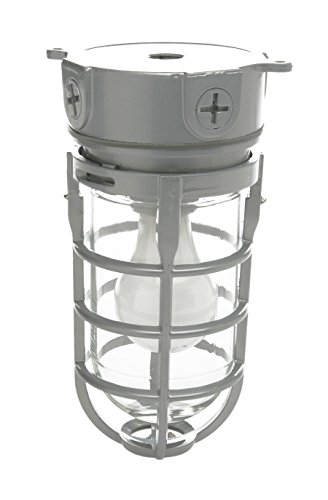 Designers Edge L1706 One-Light Outdoor Weather Tight Industrial Light with Clear Globe, Accepts up to 150-Watt Incandescent Bulbs (Designers Edge compare prices)