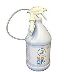 Wash Safe WS-RO-1G Clear Rust Off Rust and Hard Water Stain Remover, 1 gal Bottle with Spray Attachment