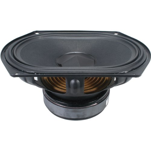 Tang Band W69-1042J 6X9 Subwoofer