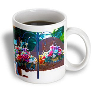 Jos Fauxtographee St. George - A Cute Plant Hanger With Fake Flowers In Dixie Downs - 11Oz Mug (Mug_99703_1)