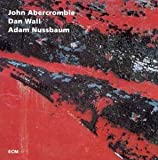 While We're Young By John Abercrombie (2008-12-19)
