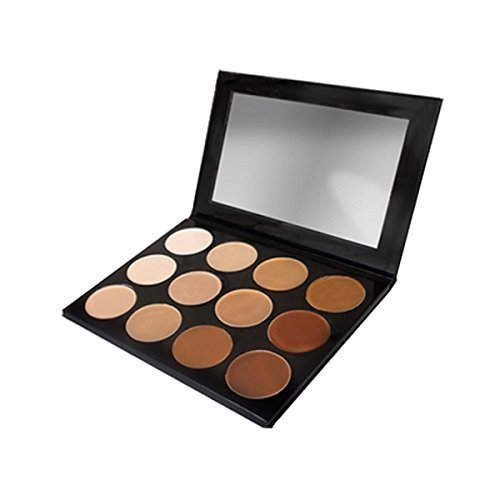 Mehron Celebre Pro HD Cream Foundation Palette- 12 Best Selling Shades! by Mehron