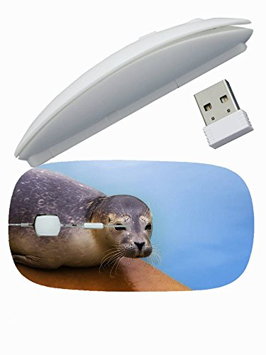 Excellent Customized Colorful ( Animals seal surface lie face ) Wireless Mouse Good For Men's 2.4 GHz -3 Adjustable DPI Levels - Nano USB wireless receiver (SB-W-20219)