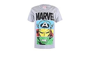 MARVEL Camiseta Manga Corta Heroes Unite (Gris)
