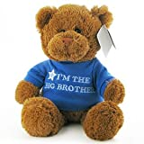 Gund Im the Big Brother Teddy Bear
