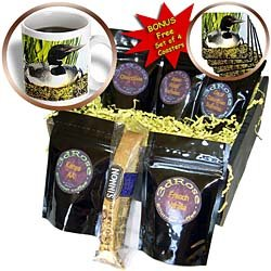 Birds - Loon Duck - Coffee Gift Baskets - Coffee Gift Basket