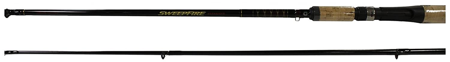 Daiwa Sweepfire Medium Cast Rod, 2 Piece (6-Feet 6-Inch, Black)