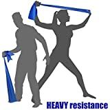 EXERCISE RESISTANCE BANDS - Home Gym Fitness Equipment for Everyone. Ideal for Physical Therapy, Strength Workout, Theraband, Pilates, Beachbody, Yoga, Mat, Rehab, Seated | LATEX-FREE SAFETY | 6.5ft