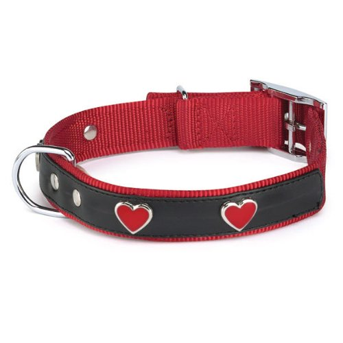 East Side Collection 11 To 14-Inch Nylon Heart Charm Dog Collar, Red