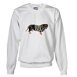 Lily Cool Sweater Dachshund Dog Sweatshirt