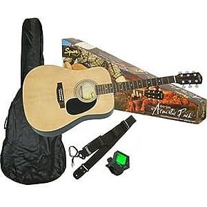 Fender SA-100