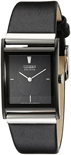 Citizen Eco-Drive Men's BL6005-01E Stainless Steel Watch with Leather Band