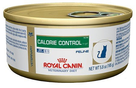Royal Canin Feline Calorie Control Loaf In Gel