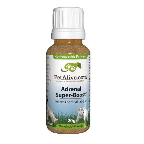 Adrenal Super-Boost for Adrenal Fatigue Glands Pets