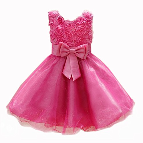 Summer Childs Girls 3D Rose Flower Bridesmaid Ball Gown Party Tutu Dress (2-3 Years, Rose Red)