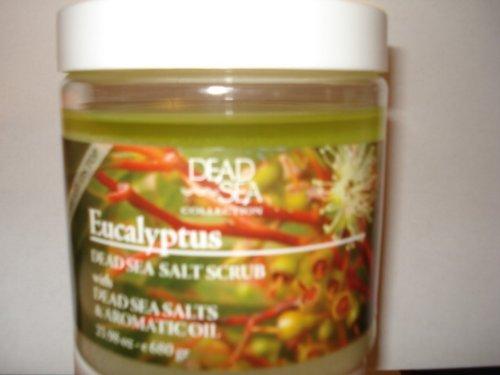 Dead Sea Eucalyptus Salt Scrub 23.98 Oz | Dead Sea Premier ...