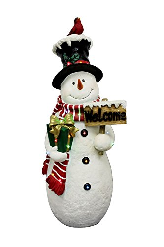 National Tree White Snowman With Sign And 17 Multi Led Lights, 28.5-Inch