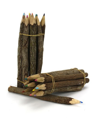 size-long-60-inches-thai-tree-branch-twig-pencil-bundle-large-size-mixed-colors-multiparty-of-1-bund