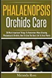 img - for Phalaenopsis Orchids Care : 30 Most Important Things to Remember When Growing Phalaenopsis Orchids, How to Give the Best Life to Your Plants (Paperback)--by Miranda Ross [2015 Edition] book / textbook / text book