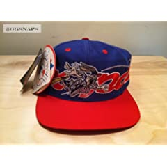 Montreal Expos Looney Tunes Vintage Snapback Hat by Logo 7