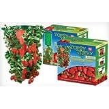 Topsy Turvy Strawberry Planter (2 pack)