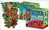 Topsy Turvy Strawberry Upside-Down Planters (Pack of 2)