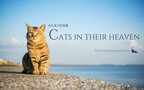 のらネコ写真集 Cats in their heaven