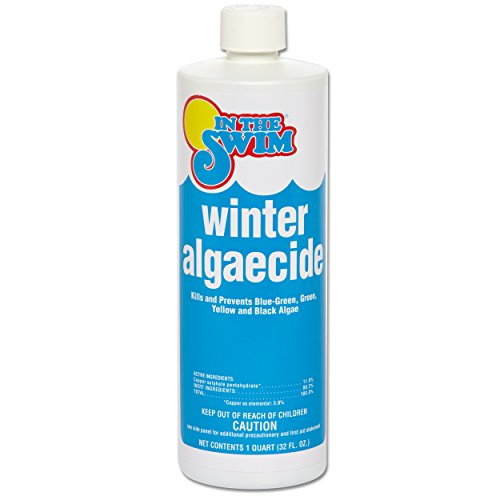in-the-swim-winter-swimming-pool-algaecide-1-quart