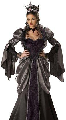 Adult Halloween Costumes Wicked Evil Queen Costume