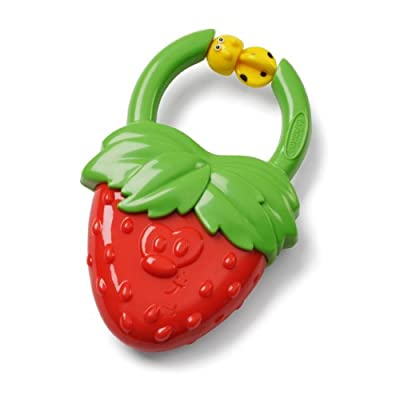 Vibrating Teether - (Strawberry/Grape Assort) by Infantino