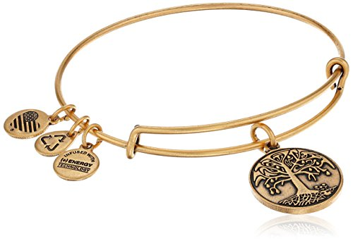 Alex-and-Ani-Womens-Tree-of-Life-Bangle-Bracelet