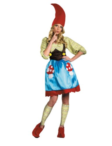 Ms. Gnome Adult Costume 4-6 Adult Womens Costume