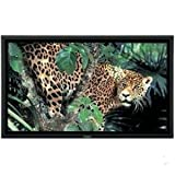 "Panasonic TH-50PF9UK 50"" 1080P 1920X1080 Plasma HDTV (Black)"