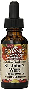 Botanic Choice Alcohol Free Liquid Extract, St. Johnswort, 1 Fluid Ounce
