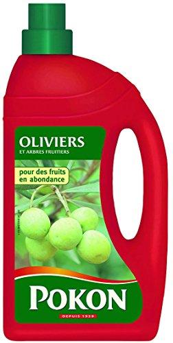 scotts-engrais-olivier-et-arbre-fruitier-gpok-rouge-13-x-63-x-247-cm-1-l-fr2419