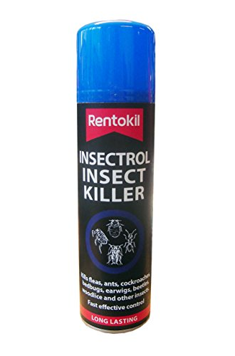 rentokil-psi36-insectrol-insect-killer-250ml-aerosol