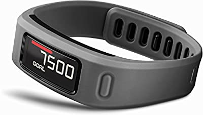Garmin Vivofit Fitness Band from Garmin