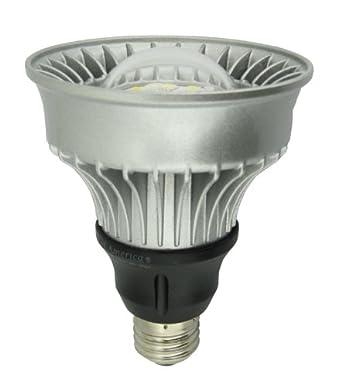 dimmable led par30 light bulb replaces incandescent halogen recessed track flood 9 watt. Black Bedroom Furniture Sets. Home Design Ideas
