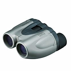 Kenko 011850 CERES 20-80 x 28 MC Binocular (Silver)