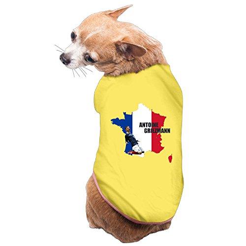 xj-cool-ag-fussball-7-spanisch-frankreich-doggy-kostum-weste-gelb